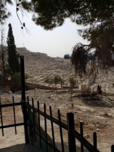 Jewish cemetery on Mount of Olives holds thousands of graves
