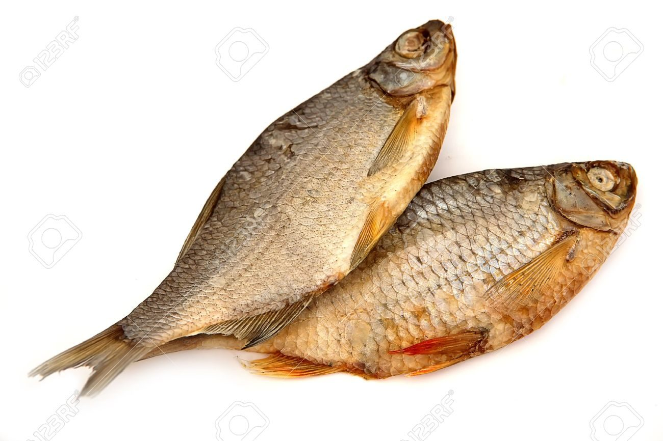 Are you starving to death lora jones ministries for Fish as food
