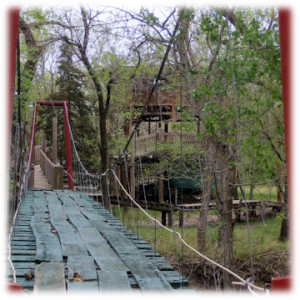 hanging bridge surrounded by trees