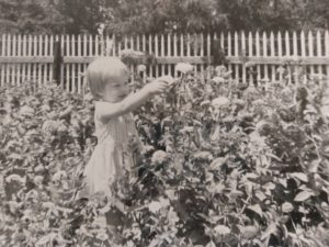 A little girl cutting flowers in a field of flowers taller than her! It's a great place to dream.