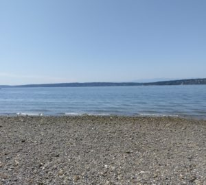From the rocky, seashell strewn beach near Stanwood, Washington, you can see the Olympic Mountains of Washington in the distance.